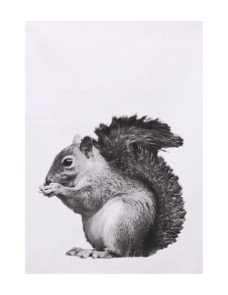 Ręcznik kuchenny Wiewiórka