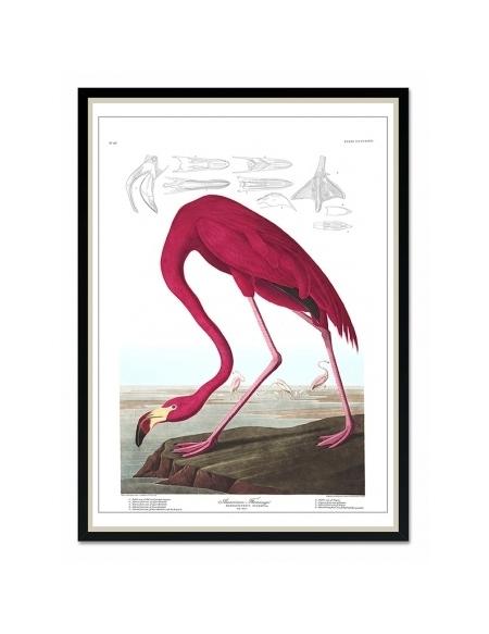 Obraz Ptak 3